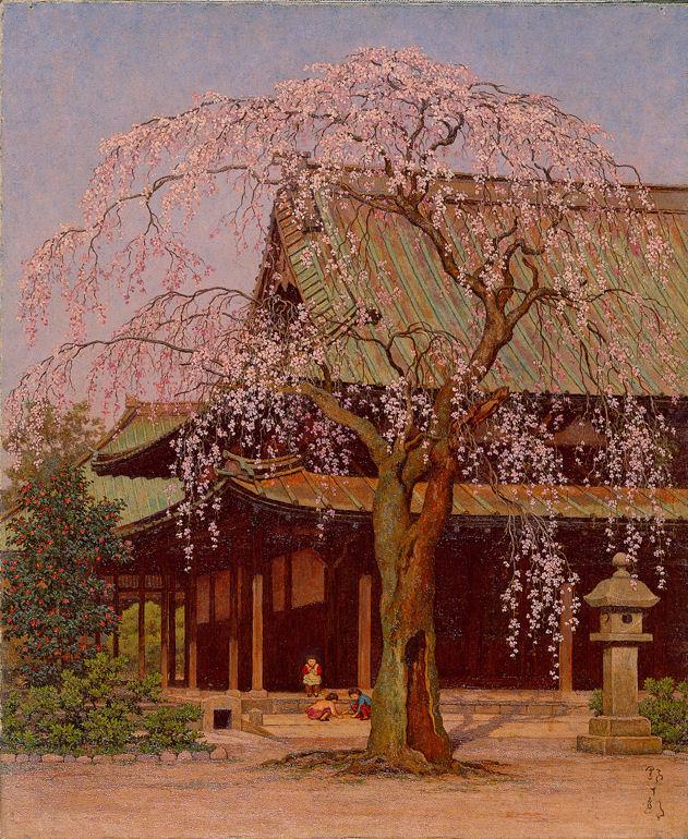 074「境内の桜」